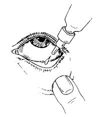 Lactocom Eye Drops 2.5ml